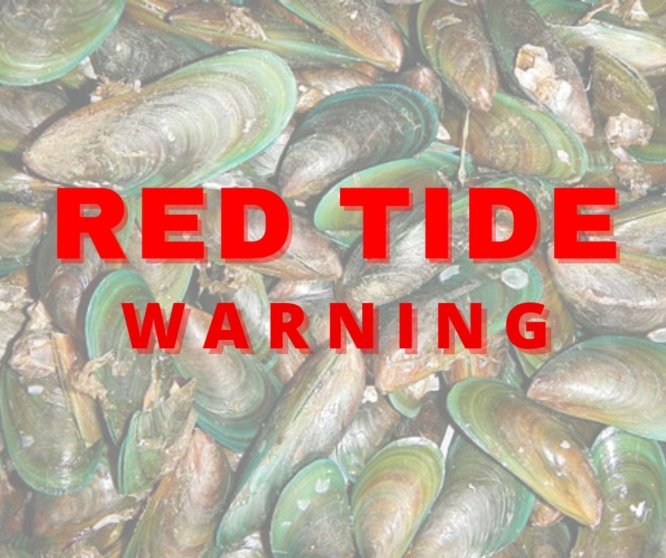 """Red Tide,"" kalat sa Visayas at Mindanao region"