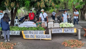 NLEX helps out community pantries
