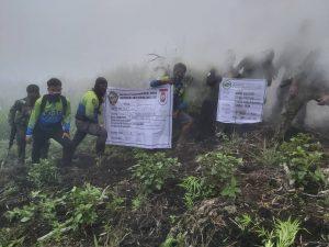 P21.9-M worth of marijuana destroyed in Kalinga